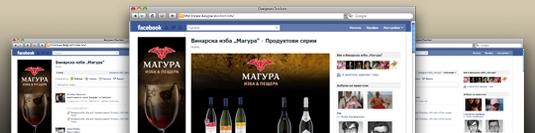 Фейсбук приложение - Магура